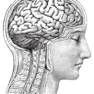 ZASADY DIAGNOZOWANIA I OPINIOWANIA W NEUROPSYCHOLOGII KLINICZNEJ