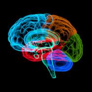 DIAGNOSTYKA NEUROPSYCHOLOGICZNA W PATOLOGII OUN
